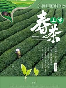 春茶宣传单