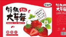 大草莓包装展开图