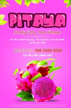 越南火龙果粉色海报