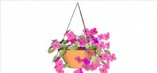 花盆盆栽植物 植物 室外模型