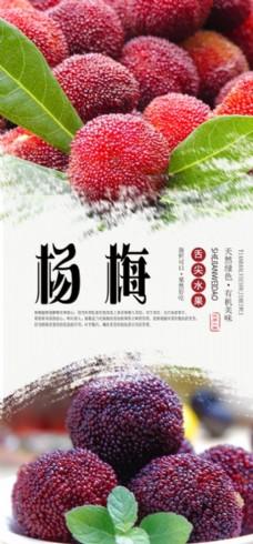 楊梅水果海報