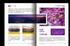 版式设计 投资手册