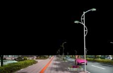 金丰路道路绿化 景观效果图