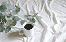 白色褶皱桌布上的咖啡 盆栽