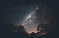 星空 树木