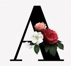 花 字母 A