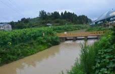 生态环境 绿色小镇 水面 湖面