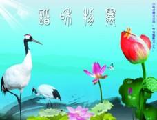 中國風  荷花