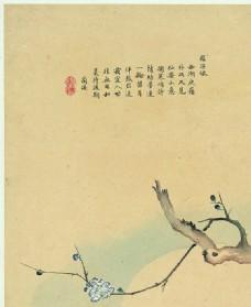 中国风花鸟工笔画