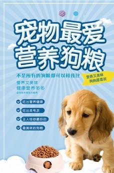 大气宠物最爱营养狗粮海报设计