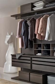 衣柜效果图照片