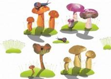 蘑菇 蜗牛 草坪