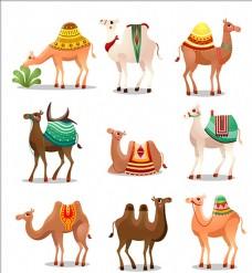 卡通骆驼素材